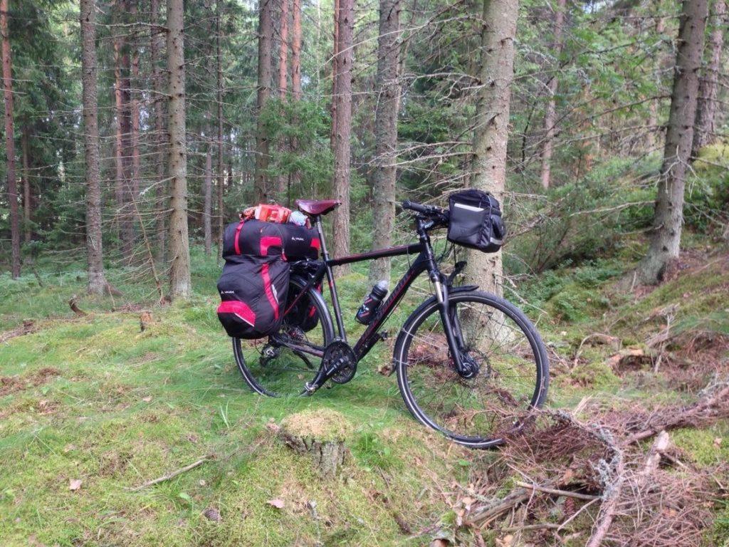 Мой велосипед Bergamont Horizon