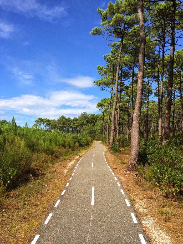 Велодорожка вдоль побережья